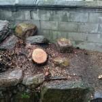 木の伐採 ブロック塀の修繕 遺品整理 不用品回収 女性スタッフ便利屋ワンズ 広島県呉市