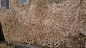 お墓掃除、お墓参り 草抜き 掃除 女性スタッフ便利屋ワンズ 広島県呉市