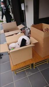 人形供養 代行 チャリティー 心優堂 女性スタッフ便利屋 広島県/広島市/呉市